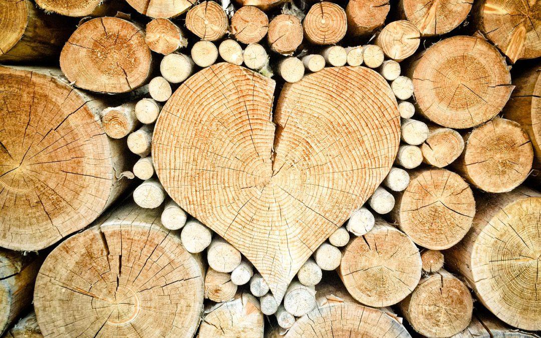 Een hart van hout…