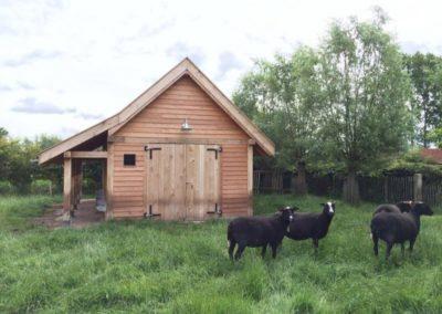 schapenstalling