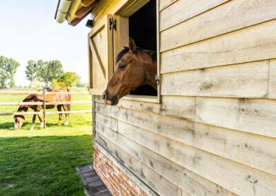Vanhauwood_paardenstalling eik en riet